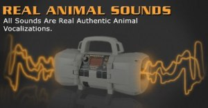 sounds_page_header